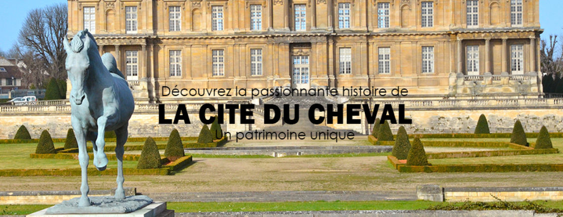 home-cite-du-cheval