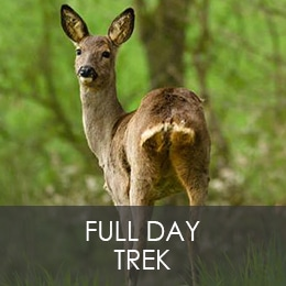 FULL DAY TREK